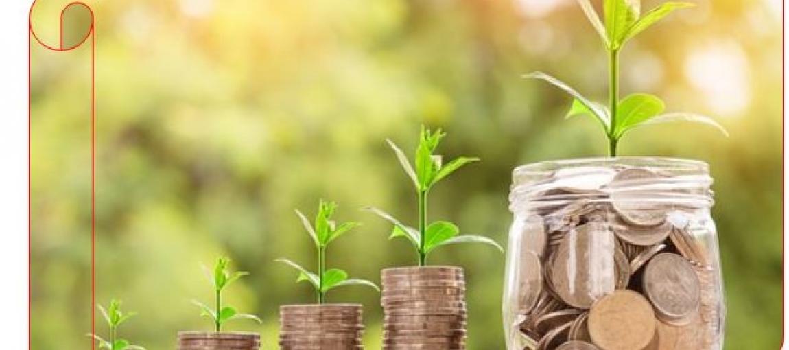 Investment Advisory Consultancy